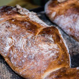 Ciabatta-loaf